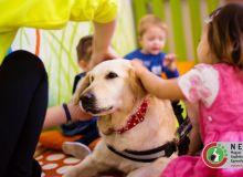 huvosvolgy_kutyaterapia_20.jpg