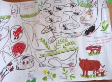 montessori_kisallatos_tabor_30.jpg
